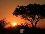 south-africa-ii-014
