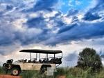 south africa-tswalu029